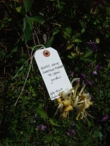 EPT label garden