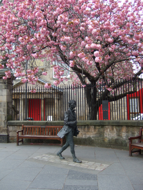 Fergusson blossom 2