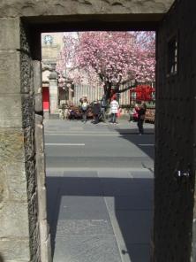 Canongate spring doorway